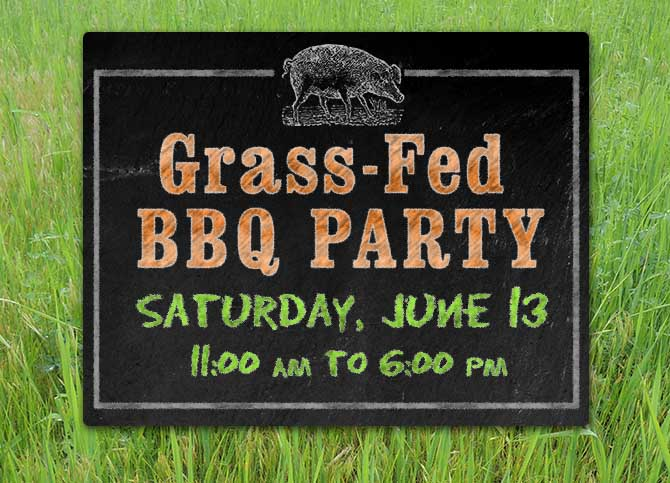 grass-fed-bbq-website-banner_2015_02