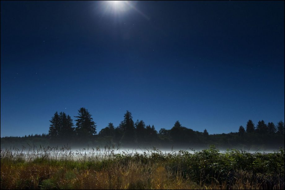 Moonlight Field by Jody9 on Flickr