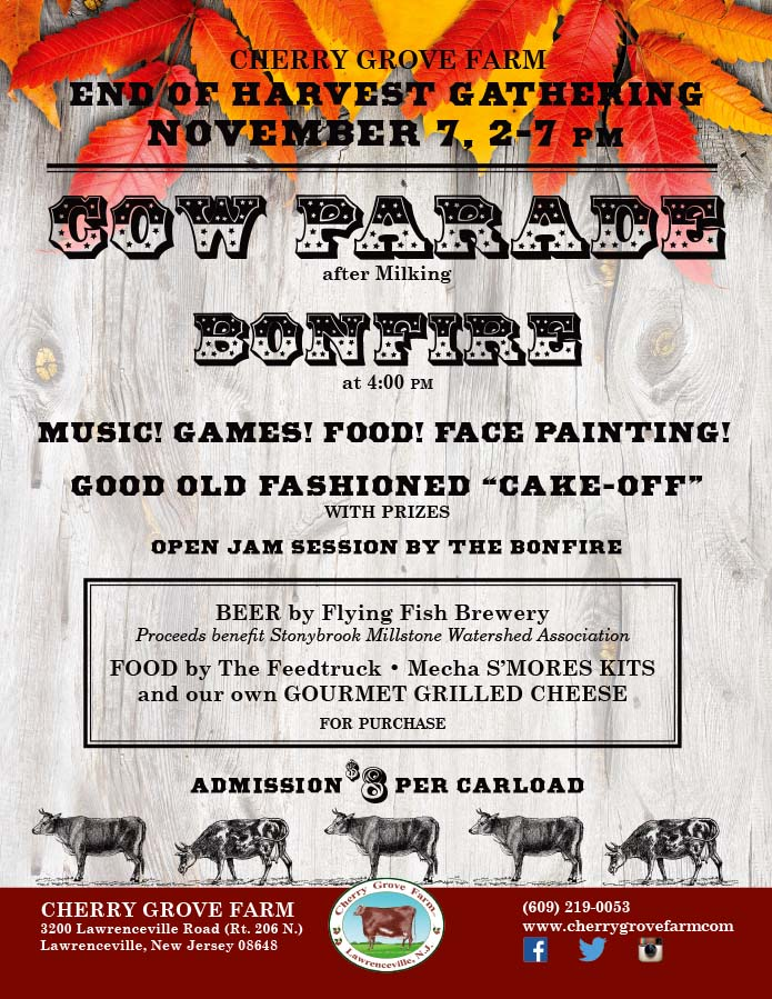 cow_parade_fall_2015_01b-4pm (2)